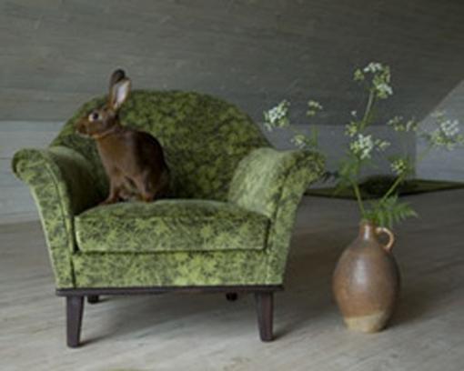 un lapin sur un fauteuil